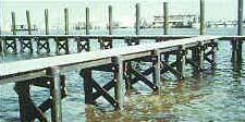 Pier Piling, Dock Piling